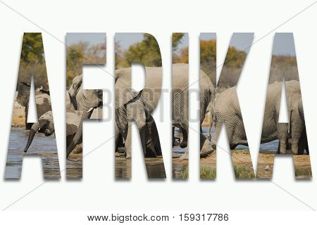 Africa and wild animals in a font