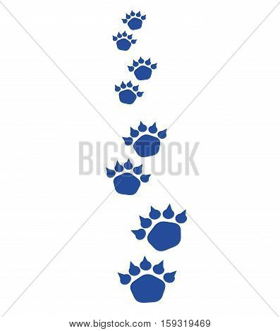 Illustration of bear footsteps. Bear trace on a white background.