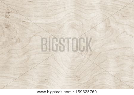 Real Natural Wood Texture wood background texture.architecture backdrop board color light vintage wall white wooden floor paint grunge backdrop pattern board rough rustic christmas.