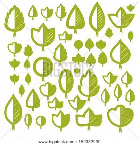 Spring Tree Leaves, Botany And Eco Flat Images. Vector Illustration Of Herbs, Collection Of Natural