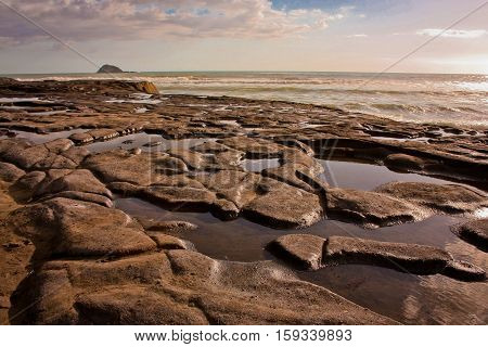 The Shoreline at Muriwai Beach near Auckland in New Zealand