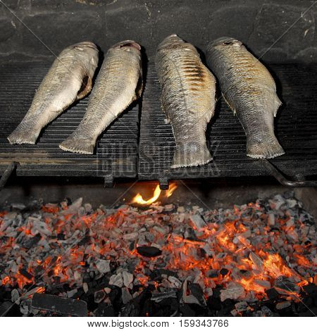 Traditional Fish Grilling, Skewed On Wood, Barbecue