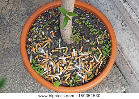 Big pile of put out cigarettes in an ashtray. Smoking, smoker, addiction, health hazard, lung cancer concept
