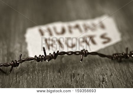 closeup of a barbed wire and a piece of paper with the text human rights handwritten in it on a rustic wooden surface