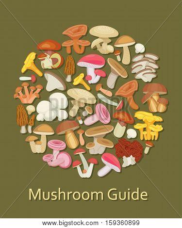 Edible mushroom set. Flat icons. Round background. Vector illustration.