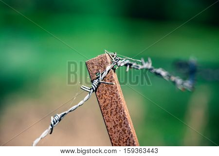Barbed wire on metal rusty column with green background