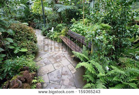 Bench In Botanical Garden