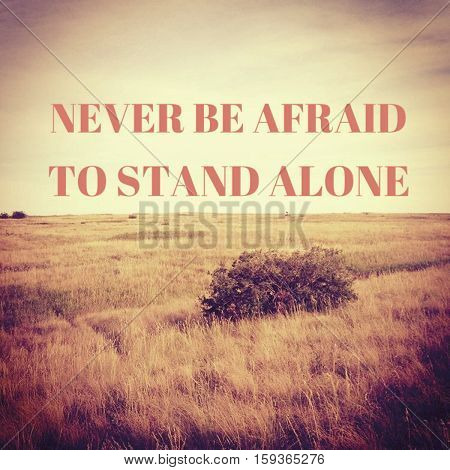 Inspirational image.  Never be afraid to stand alone. Isolated bush in prairie field with motivational quote.  Inspirational quote on prairie field landscape.  Instagram effects.