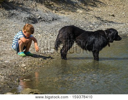 Big Black Dog And His Little Boy Playing On The Shore Of A Lake