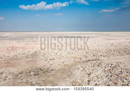 White salt lake Sivash. The crystals of salt. White desert landscape with light clouds. Crimea.