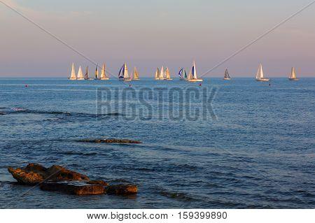 Seaview At Livorno, Tuscany, Italy