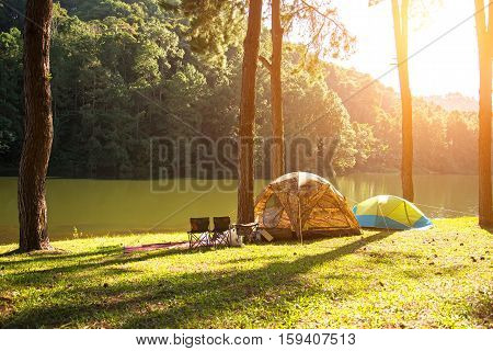 Sun rise at Pang-ung Pine forest in Thailand select and soft focus