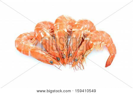 Cooked shrimps prawns isolated on white background