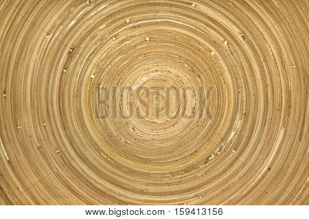 Closeup of circular pattern on wooden surface
