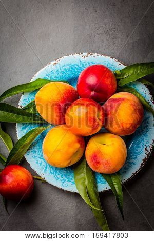 Fresh peaches with fresh leaves on blue plate on gray stone slate background. Summer peaches top view