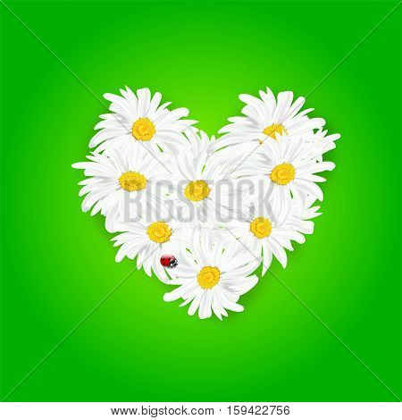 Abstract Heart From Daisy Flowers And Ladybug