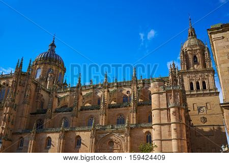 Salamanca Cathedral facade in Spain by the Via de la Plata way to Santiago exterior image shot from public floor