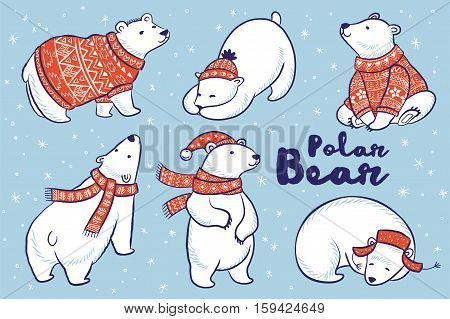 Cute hand drawn polar bear set in red sweater, scarf and hat. Vector illustration