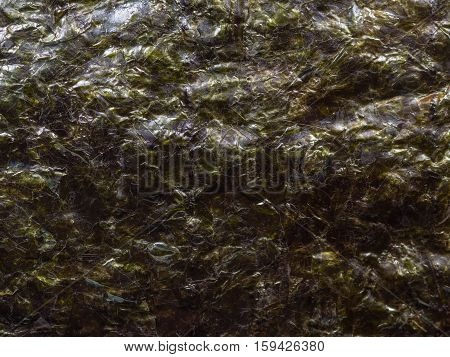 Dried nori seaweed close up for background