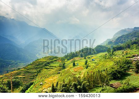 Beautiful View Of Rice Terraces At Highlands, Sapa, Vietnam