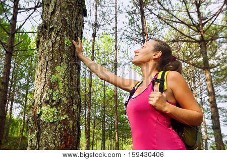 Woman enjoying the beautiful pines travel green forest in Europe. Ecotourism concept image with happy female hiker.