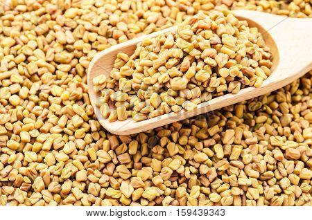 wooden scoop with fenugreek seeds fenugreek seeds background