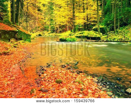 Fall At Mountain River. Low Level Of Water, Gravel With Vivid Colorful Leaves. Mossy Boulder