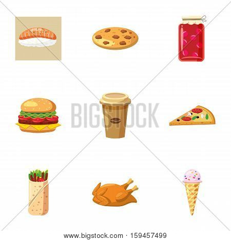 Junk food icons set. Cartoon illustration of 9 junk food vector icons for web