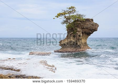 Rock formation at Manzanillo beach Costa Rica caribbean coast