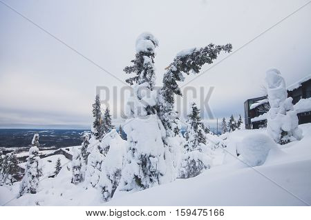 Beautiful cold mountain view of ski resort, winter day with slope, piste and ski lift, evening twilight night picture