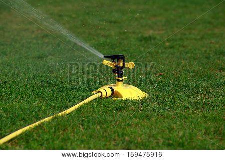 Lawn sprinkler spraying water over green grass