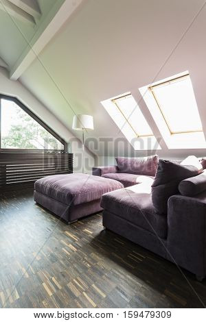 Purple Sofa In Attic Lounge Room