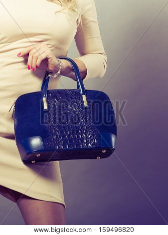 Part Body Of Elegant Woman With Bag.