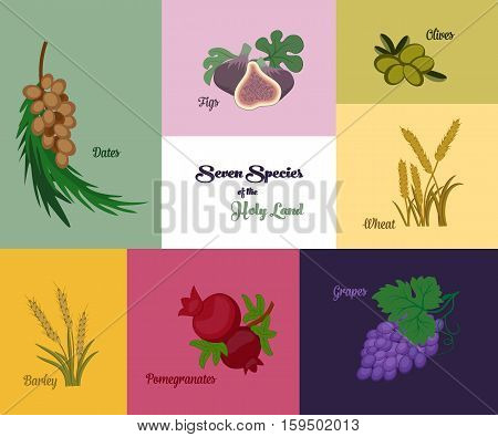Seven species of the Holy Land two grains and five fruits Jewish holiday Shavuot vector illustration