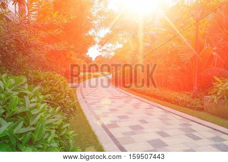 pathway in outdoor of a residential building with the Sun rising in the moring