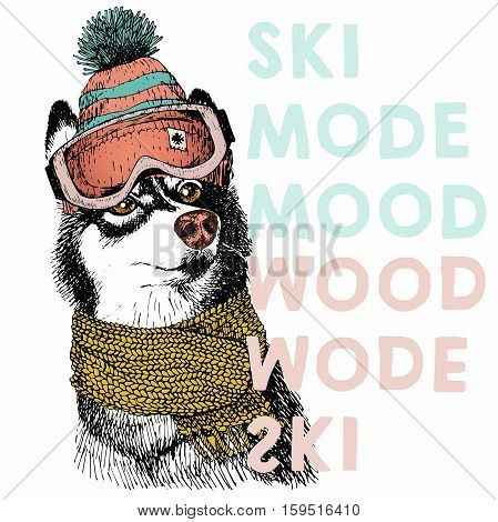 Vector poster with close up portrait of siberian husky dog.Ski mode mood. Puppy wearing beanie scarf and goggles. Hand drawn illustration.Use for sport shop resort ski-rent promotion print design.