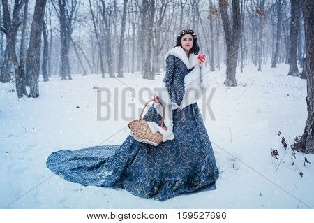 Portrait of young woman dressed in blue coat. She is walking in the winter forest holding a basket with apples