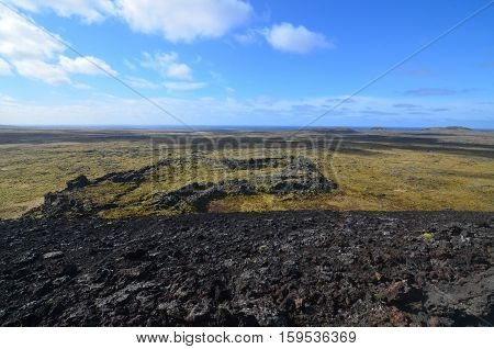 Lava field as far as the eye can see covered in moss.
