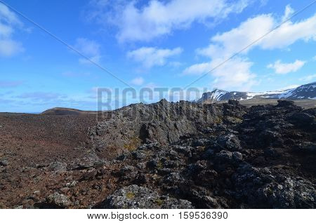Field of lava rock in Iceland surrounding Eldborg Crater.