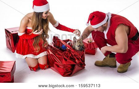 Handsome young man and pretty young woman in Santa Claus hat and costume, with pug dog, standing holding colorful festive Christmas gifts to celebrate the season, on white background
