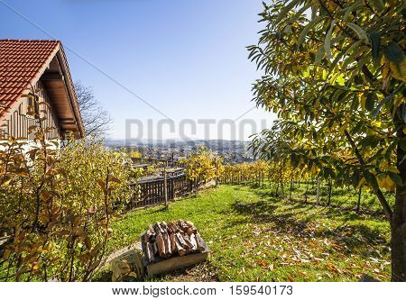 Beautiful garten with vineyards and terrace on vine route in Styria Austria