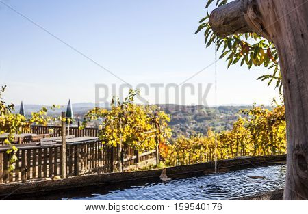 Wooden fountain with fresh clear water in garten with vineyards and terrace on vine route in Styria Austria