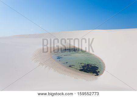 White sand dunes panorama from Lencois Maranhenses National Park Brazil. Rainwater lagoon. Brazilian landscape