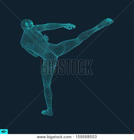 Fighter. Sports concept. 3D Model of Man. Human Body. Sport Symbol. Design Element. Polygonal Design. Vector Illustration.