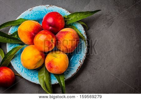 Fresh peaches with fresh leaves on blue plate on gray stone slate background. Summer peaches top view, copy space