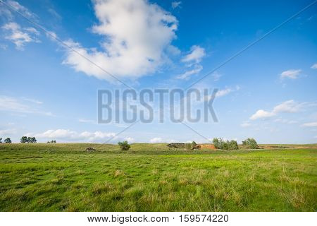 Rural landscape with lone trees, hills and the red car. In the foreground a meadow with grass and clumps. In the background the hills and fields. Village Randava Krasnokutsky district, Kharkiv region. Ukraine.