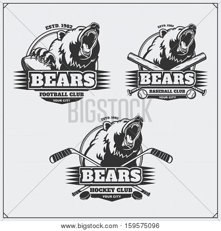 Football, baseball and hockey badges and labels. Sport club emblems with head of bear.