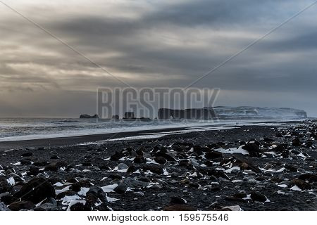 View of Dyrholaey from black sand beach, Vik, Iceland