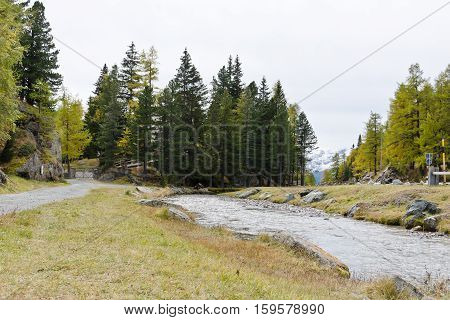 A small mountain river the gray autumn sky