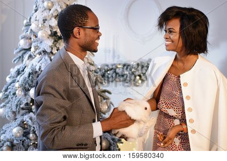 Happy Afro-american couple holdind the small white rabbit, looking and smilind at each other near the Christmas Tree on the eve of The New Year